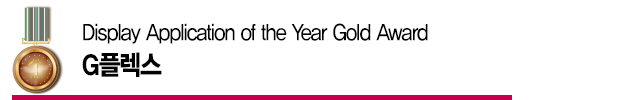Display Application of the Year Gold Award – G플렉스