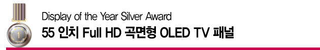 Display of the Year Silver Award – 55 인치 Full HD 곡면형 OLED TV 패널